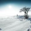 20101230-snow-102
