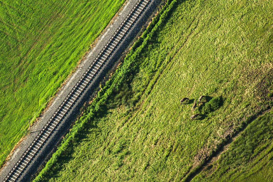 Eisenbahn im Allgäu